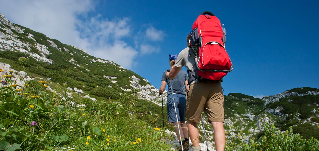 Family with backpacks walking from behind on mountain path with green meadows and blue sky
