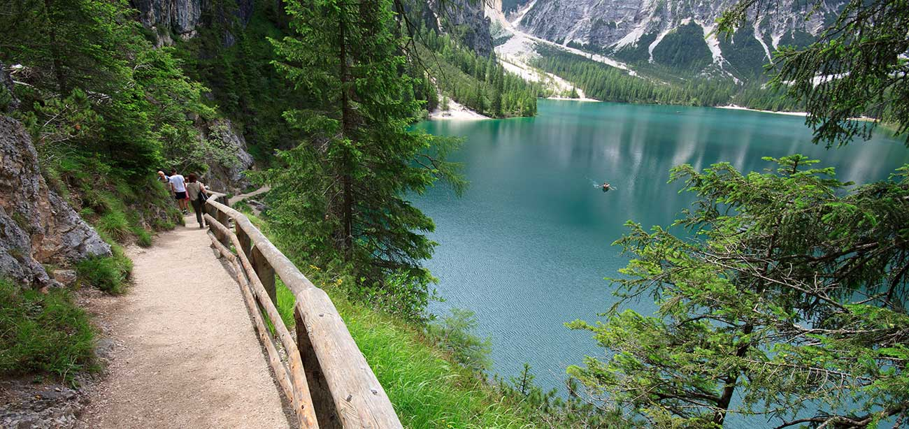 View on Braies lake from street with trees and green meadows